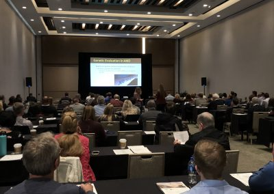 Jessica Steen Speaking at OEC Scottsdale 2019